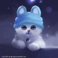 Blue_Cat_21