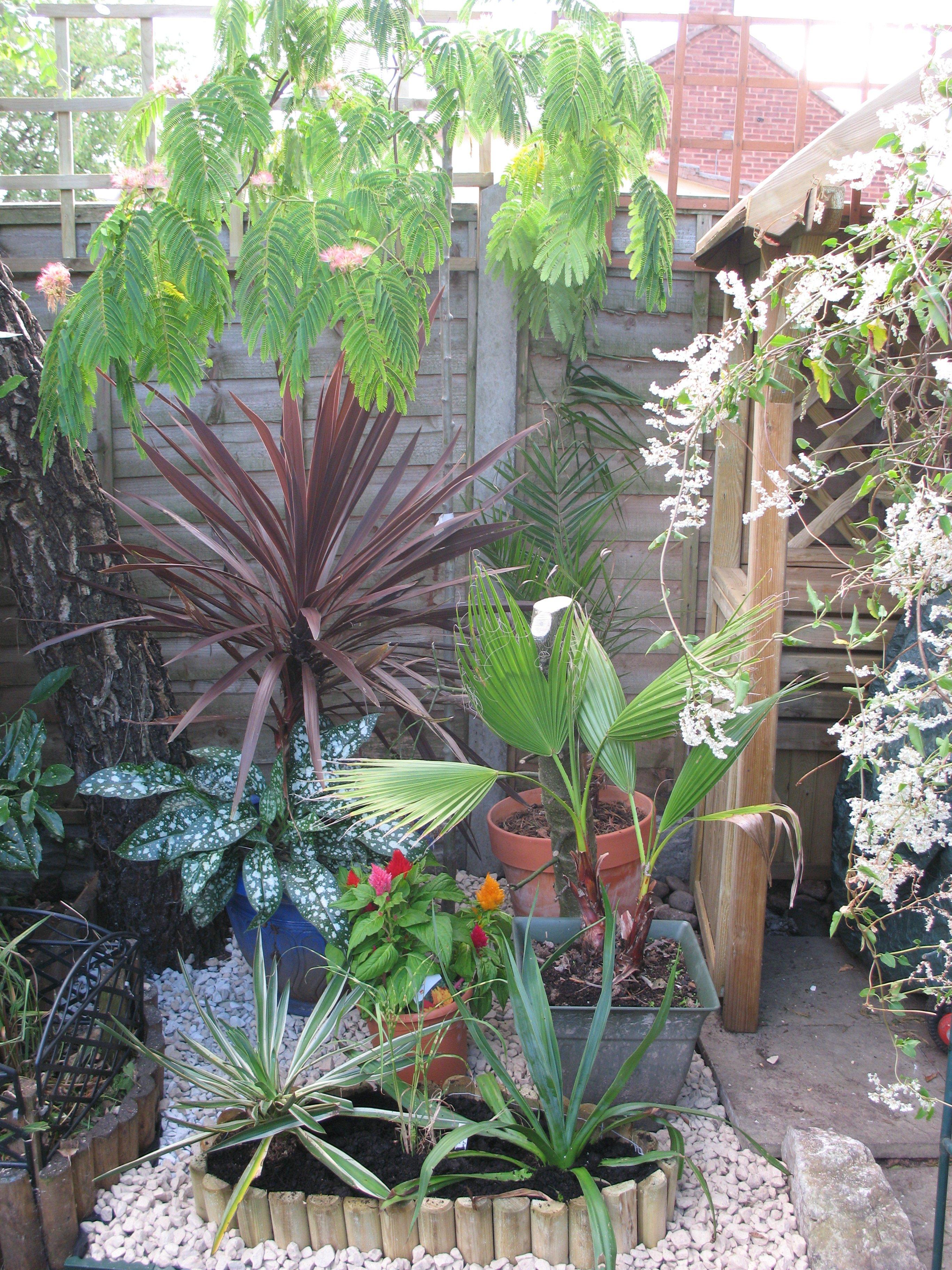 Garden Maniac