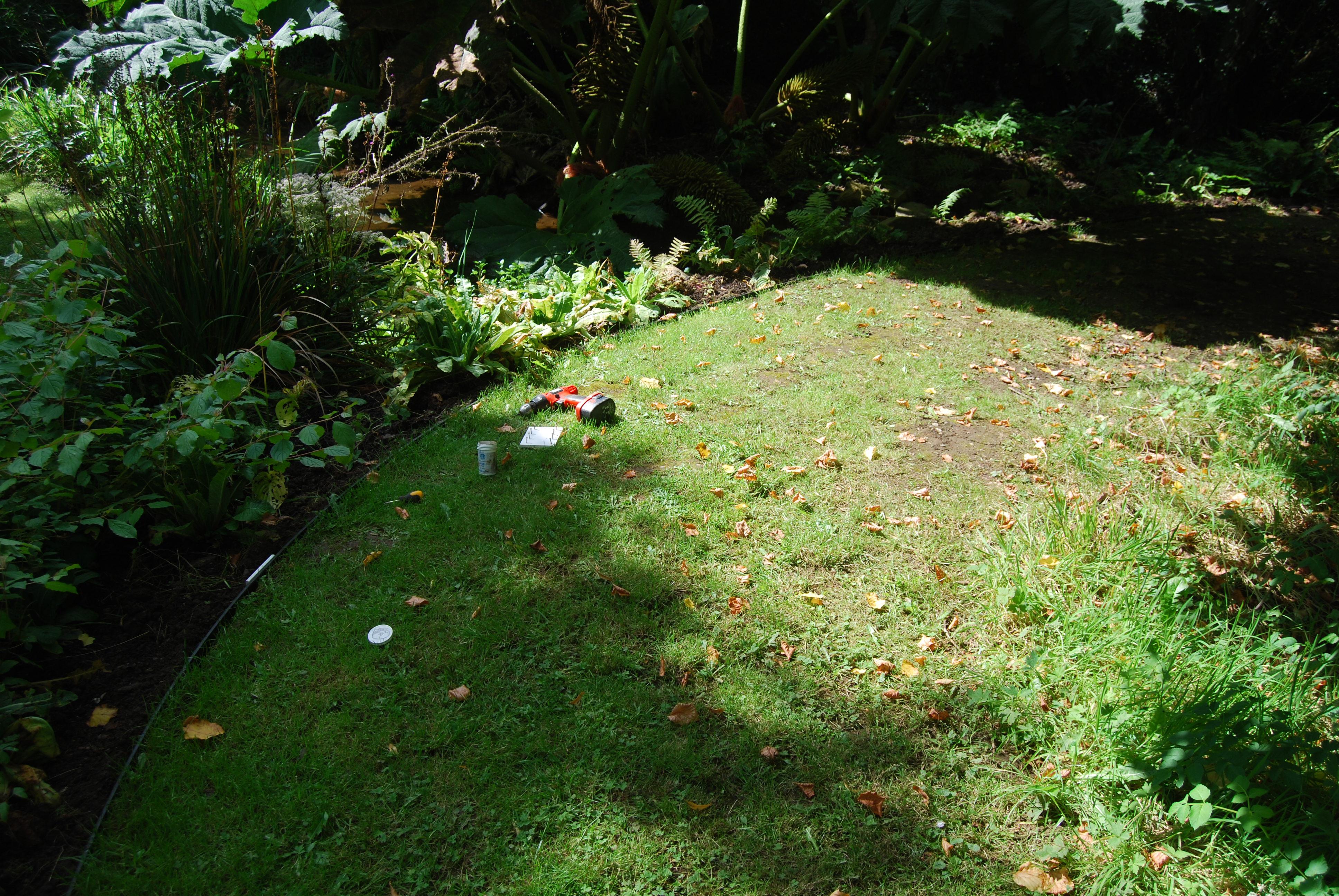 A Low Cost Border Edging — BBC Gardeners' World Magazine