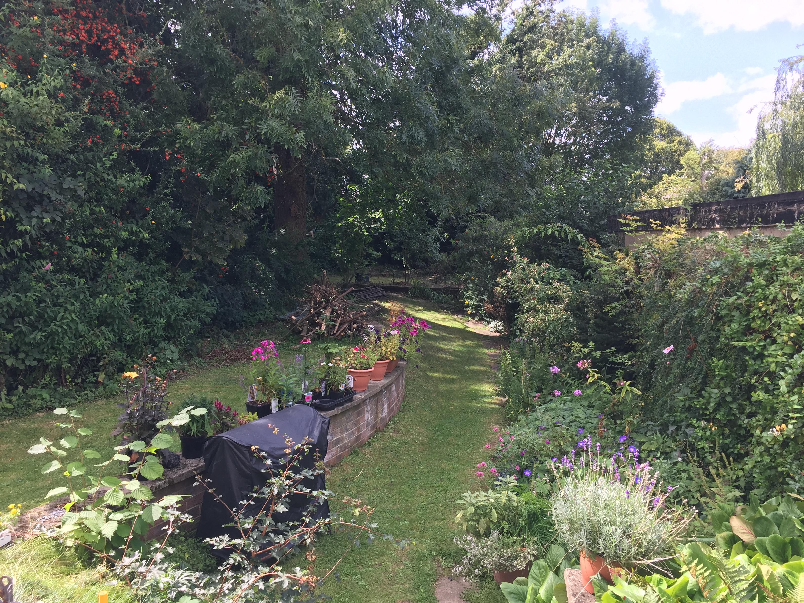 Gardeners World Forum