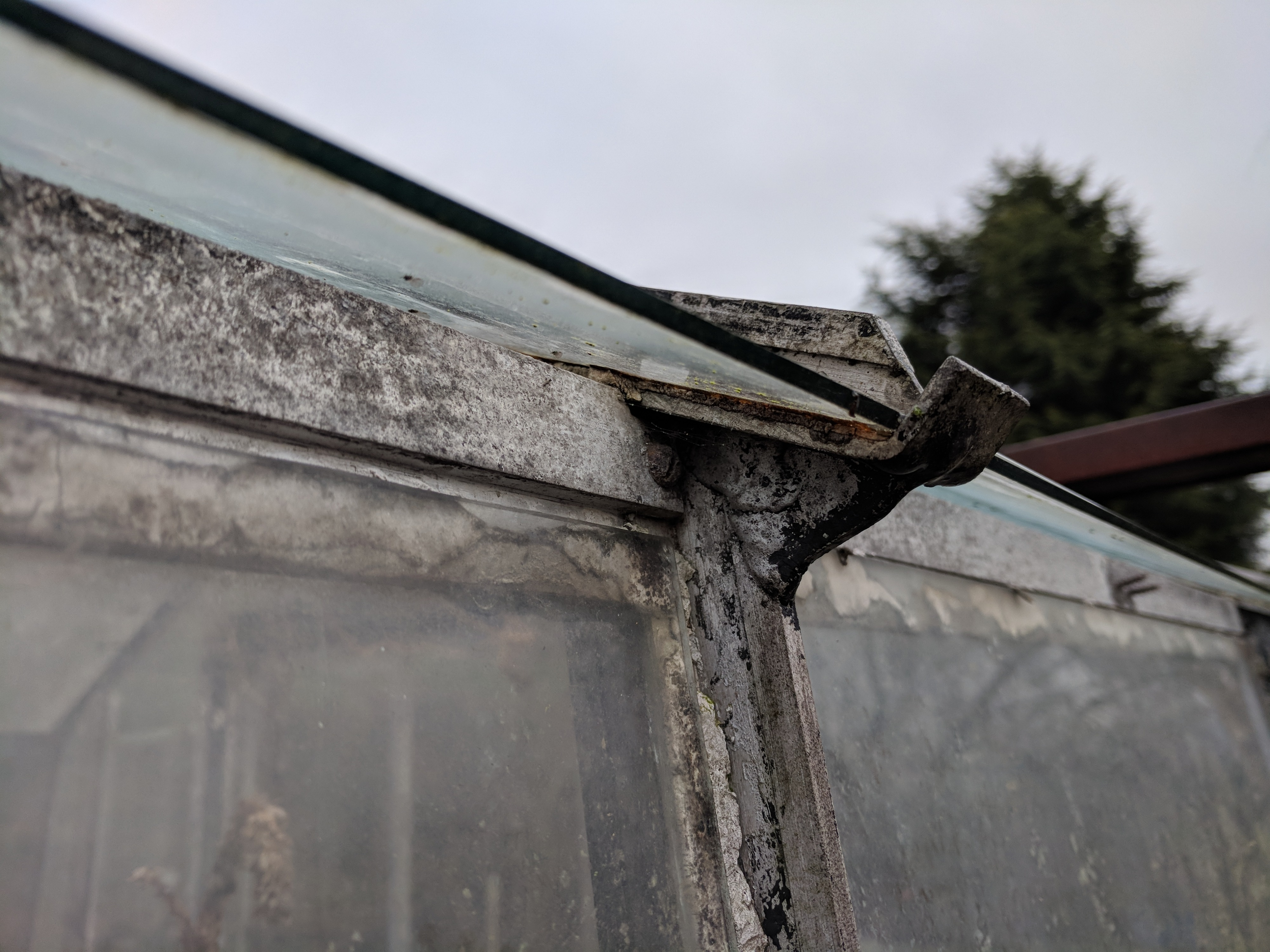 Attaching guttering to metal greenhouse — BBC Gardeners