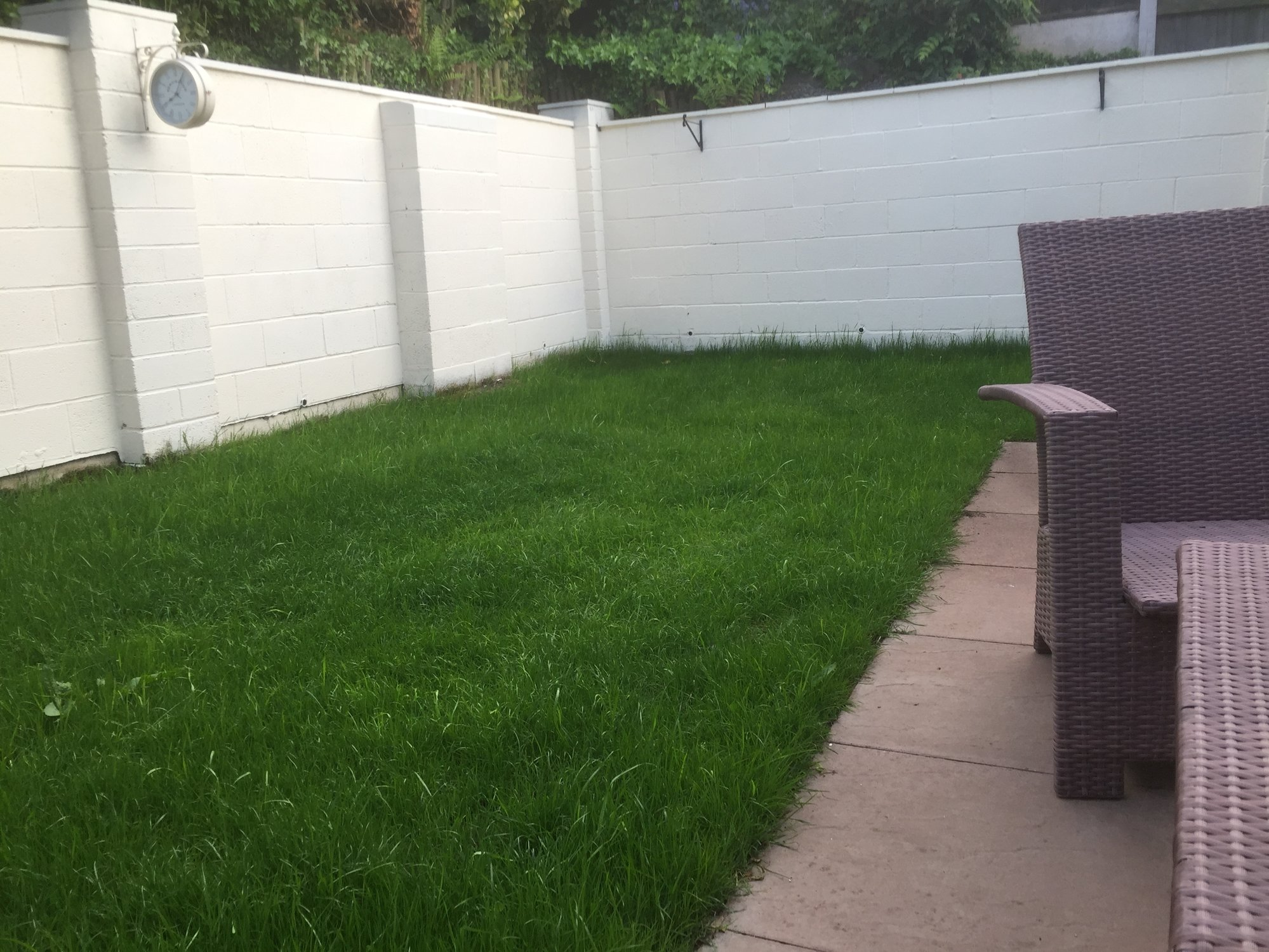 Improving lawn drainage — BBC Gardeners' World Magazine
