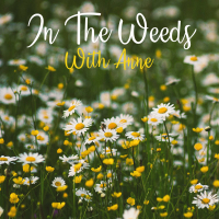 In The Weeds With Anne