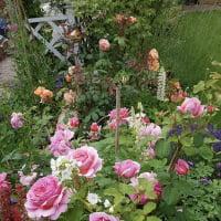 Gartener