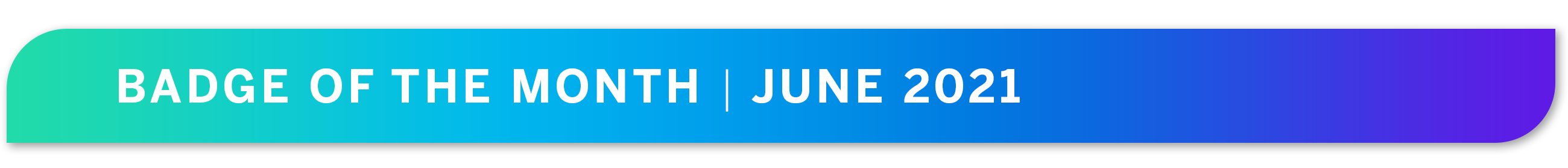June 2021 _ Badge of the Month Banner (1).png