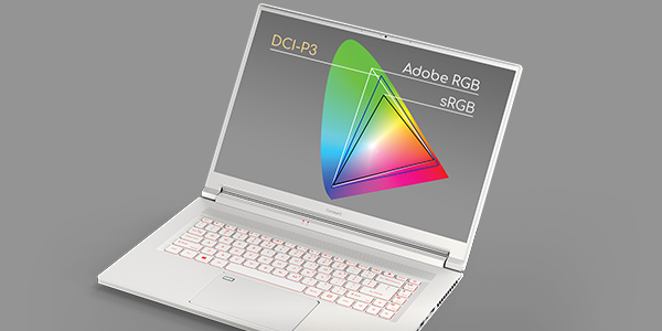 The screen of the ConceptD 5 covers 100 of the DCI-P3 color gamut
