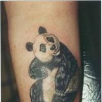 Panda99
