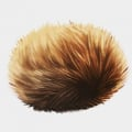 Tribble of Doom
