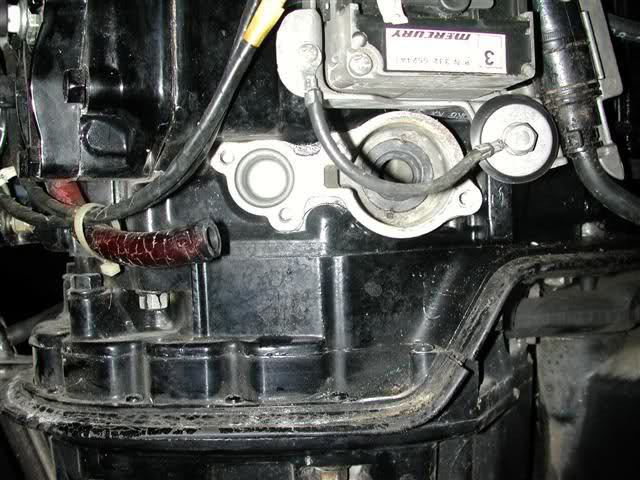 Merc 150 poppet valve question     Florida Sportsman
