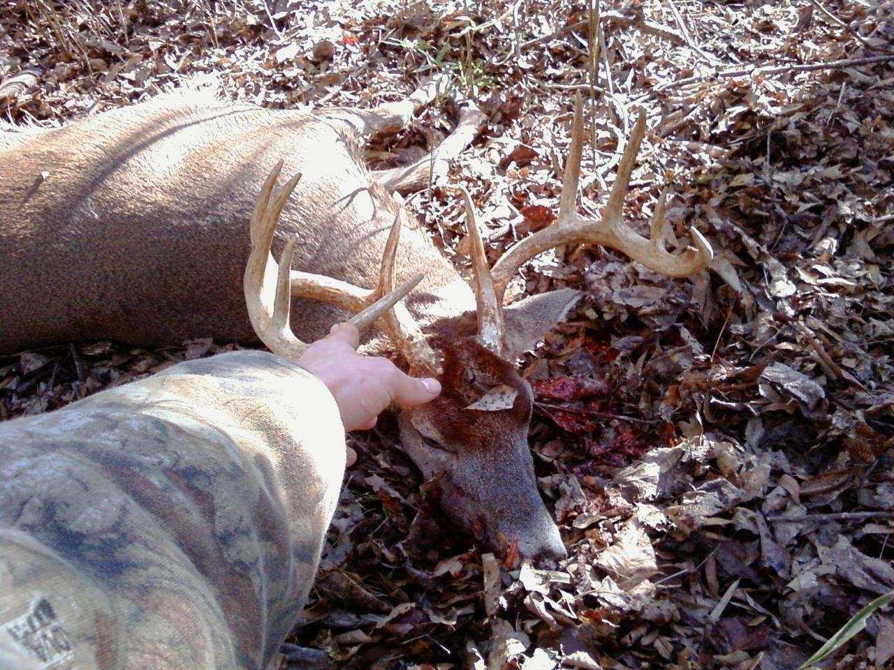 Alabama Deer Hunting — Florida Sportsman