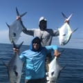 BLfishing