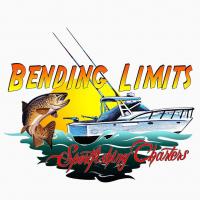 BendingLimits