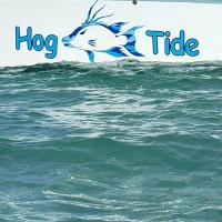 HogTide