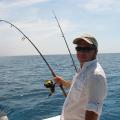 Ilive2fish