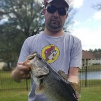 SenorLizardfish