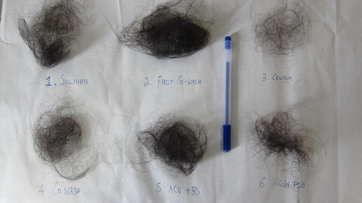 My gross hair fall pic: is this normal? — CurlTalk