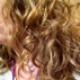 Curlybee1