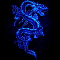 Dragonswan64