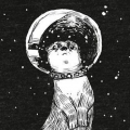SpaceOtter