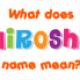 Hiroshi08