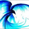 i_bleed_blue