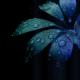 rainetic_