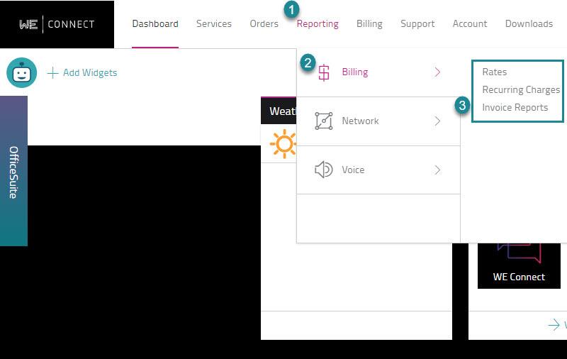Reporting - Billing Navigation Path Screen.jpg