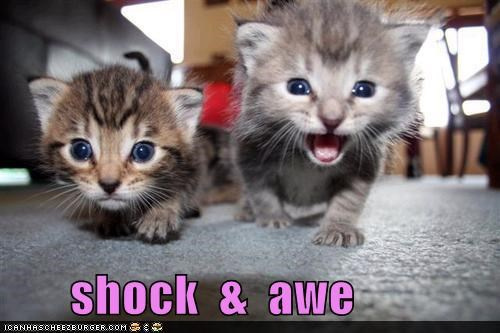 Shock and Awe.jpg
