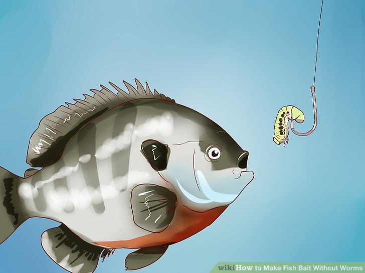 aid853908-v4-728px-Make-Fish-Bait-Without-Worms-Step-15.jpg