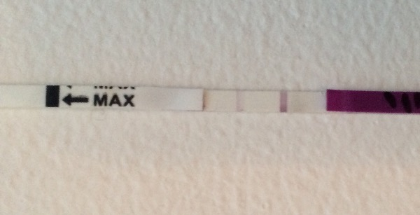 Ovulation Test Strips - Part 3 - Page 14 — MadeForMums Forum