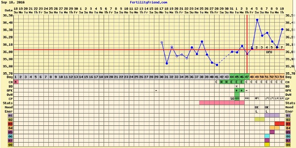 Temp slowly dropping implantation or AF coming soon?? — MadeForMums