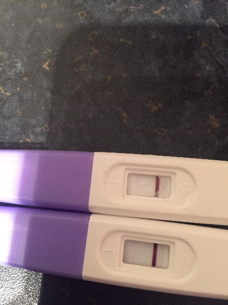 2 Faint Lines Clear And Simple But Not Pregnant On Clear Blue