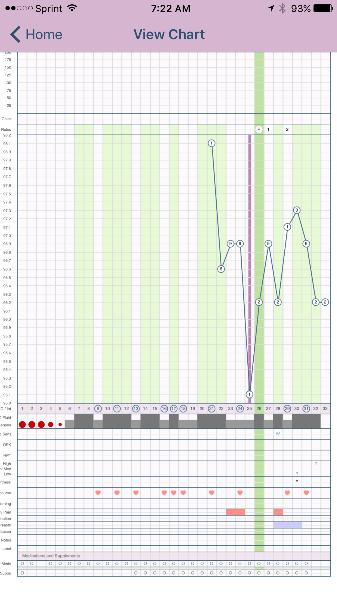 Bbt chart analysis — MadeForMums Forum
