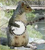 Bionic Squirrel