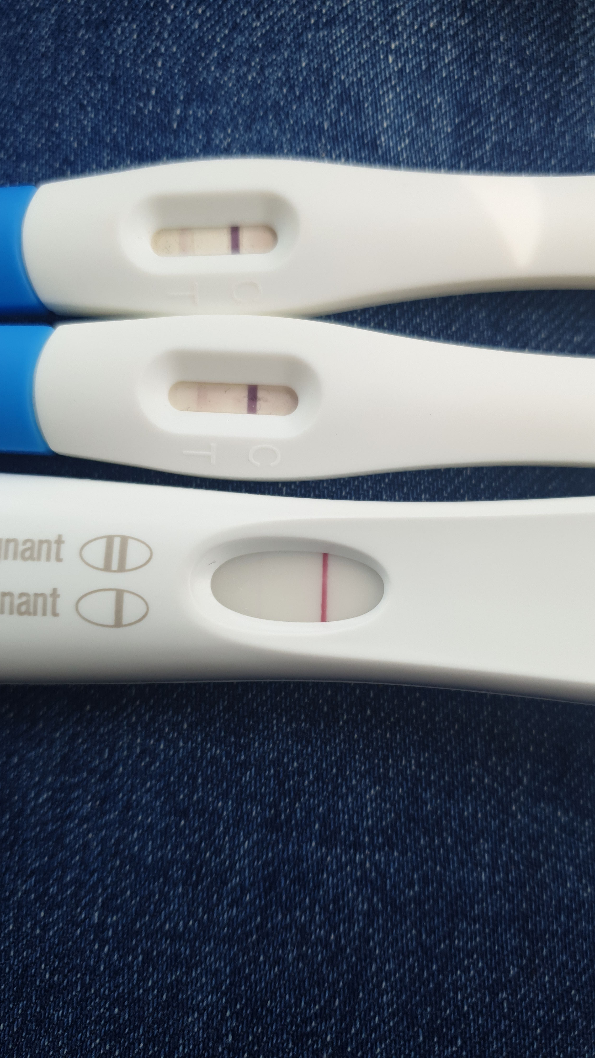 Very very faint line pregnancy test - Page 19 ...