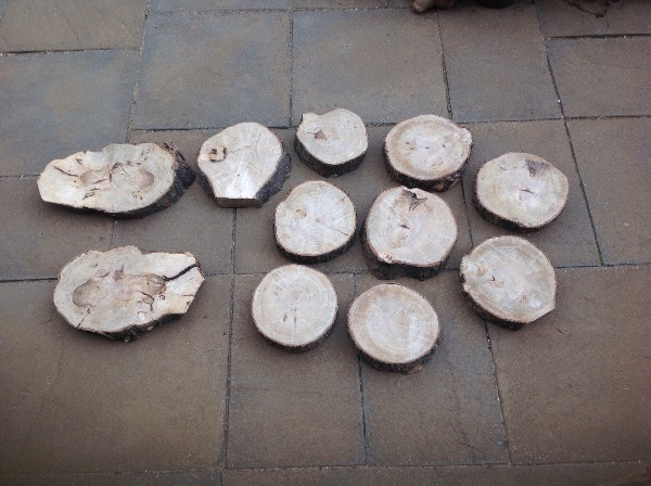 For sale: logs and stamp and plaques based in Newcastle