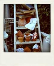 Colette vintage