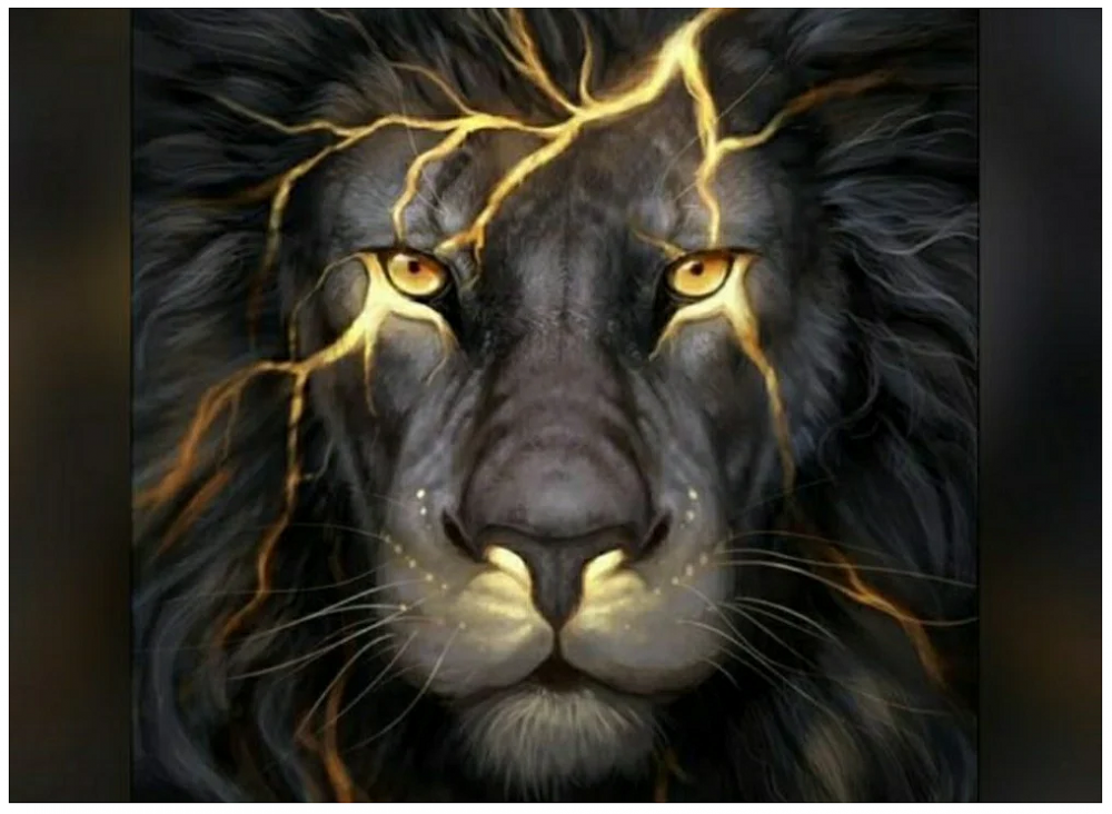 Lion Picture From @rock2233.png