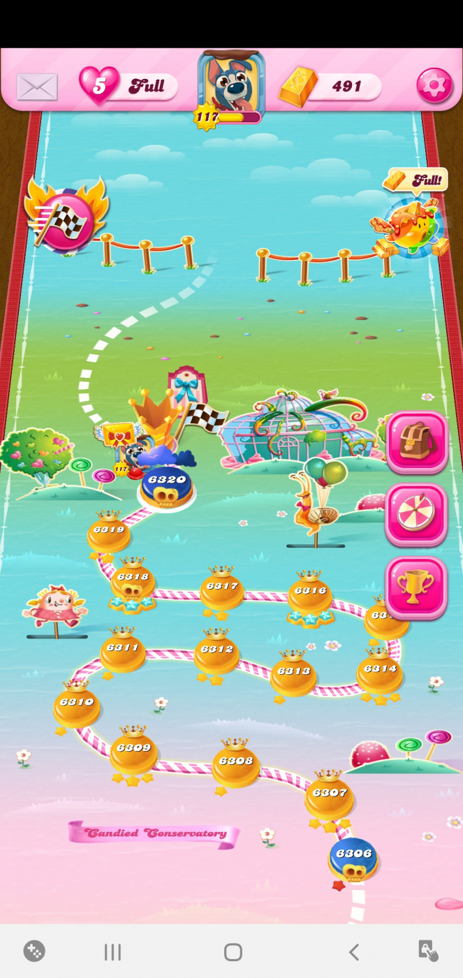 Screenshot_20200211-075016_Candy Crush Saga.jpg