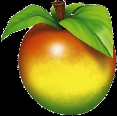 wumpa-fruit-png-6-transparent.png