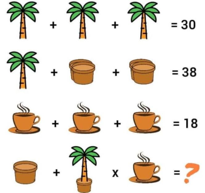 palm tree and coffee puzzle.JPG