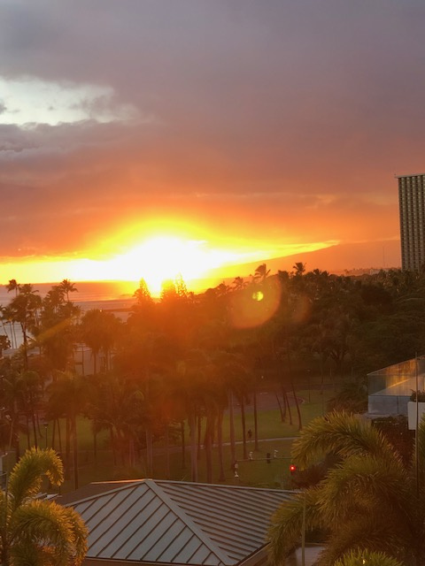 Oahu hotel 1.jpg