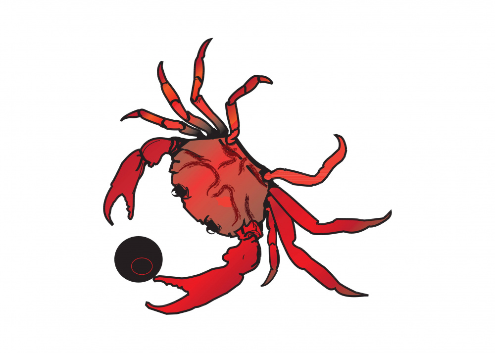 crab only.jpg
