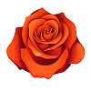 bbs_red_bloom small.png