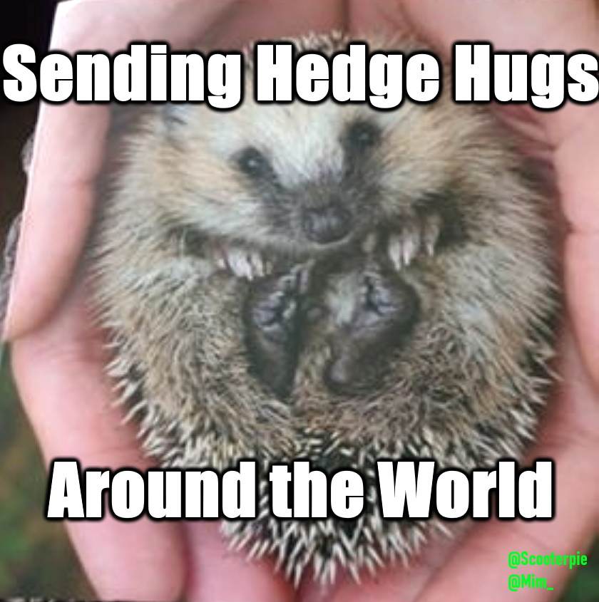 Hedgehog with Enhanced Text and Signed.jpg