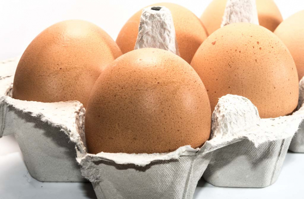 Kuriose-Feiertage-14.-Oktober-Welt-Ei-Tag-der-internationale-World-Egg-Day-2016-c-Sven-Giese-1.jpg
