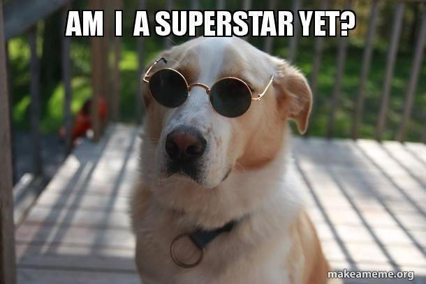 superstar_doggie.jpg