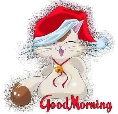 FB_IMG_1606475191044.jpg