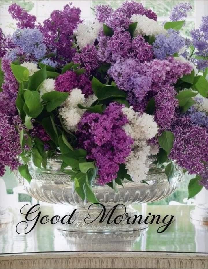FB_IMG_1621574047799.jpg