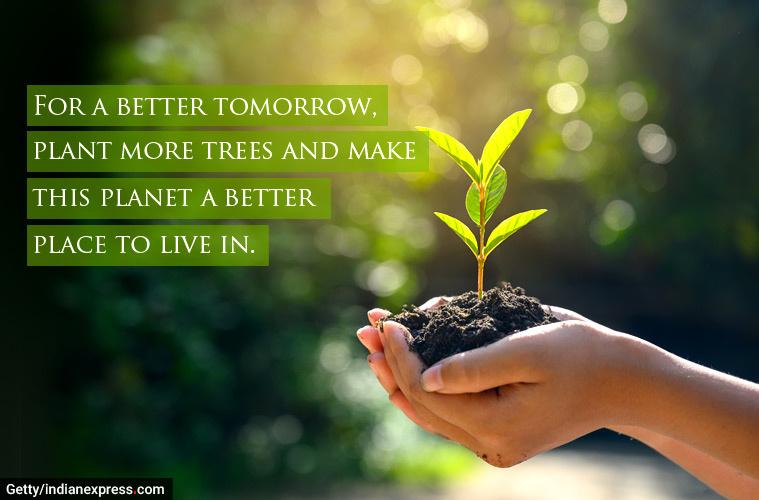 World-Environment-Day-6.jpg